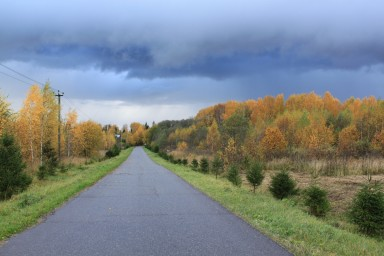 Осень хмурая, осень пестрая